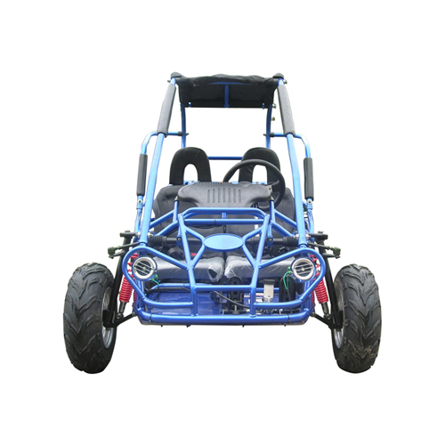 200cc Youth off road buggy