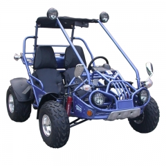 Buggy Off Road Go Karts For Sale